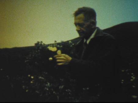 Harry J. Christoffers Sr.