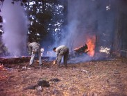 342-C-K3714 NAID: 148728116 Original Caption: Operation Firefly - Once on the ground, negro parachute fire fighters of the 555th Parachute Infantry Wield shovels and other standard equipment in stamping out forest fires. They cooperate with the US Forest Service in holding in check what has been a serious fire season in the Pacific Northwest. Umatilla National Forest, Oregon.