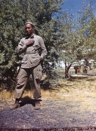 342-C-K3734 NAID: 148728146 Original Caption: Operation Firefly - 2nd Lt. Harry E. Sutton of the New York City - leader of a group which has just returned from fighting a persistent forest fire. Lt. Sutton is attrited in the typical jump suit worn by a member of the 555th Parachute Infantry.