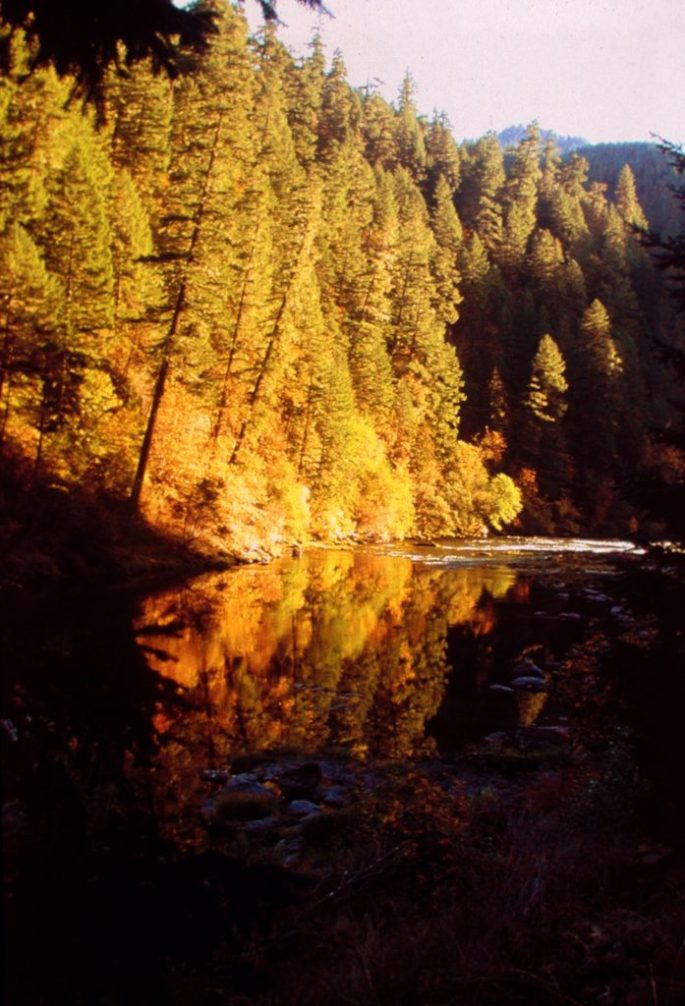 Autumn Reflections on the North Umpqua River