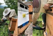 Arıcılar İçin AKS Başvuruları Devam Ediyor
