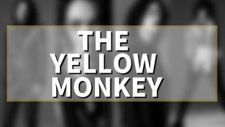 THE YELLOW MONKEY(イエモン)のマイ愛ベスト!歌詞とともに解釈した記事