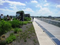 clinton library rooftop garden.may1418
