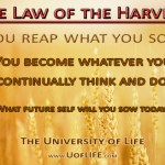 The Law of the Harvest