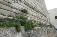 Faro del Montorsoli. Vecchi basamento (Photo credit: Grace Macrì)