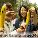 """I cinesi taroccano pure i profilattici. Più che Durex…""""Mollex"""""""
