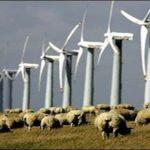 La truffa delle pale eoliche