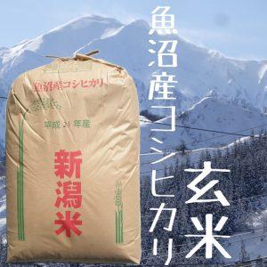 魚沼産コシヒカリ玄米30kg