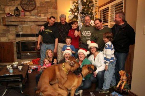 Strange family 21