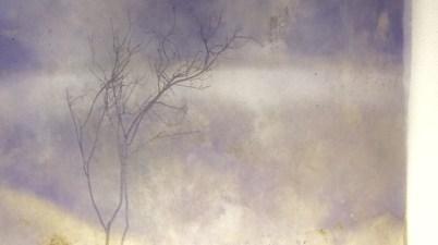 © Roberto Ghezzi | Roberto Ghezzi, Echosistema, 2019, tecnica mista su tela, 150x150 cm.