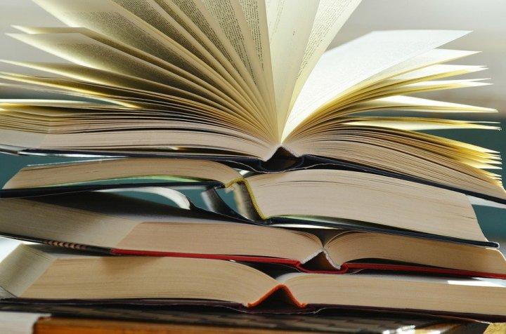 Libri, AIE, case editrici