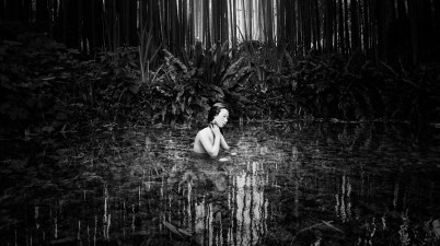 La luna e il bambù Olmo Amato
