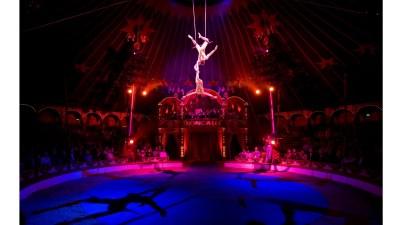 Circo, spettacolo viaggiante,