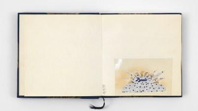 Works/Sculptural, la prima personale di Hannah Villiger all'Istituto Svizzero
