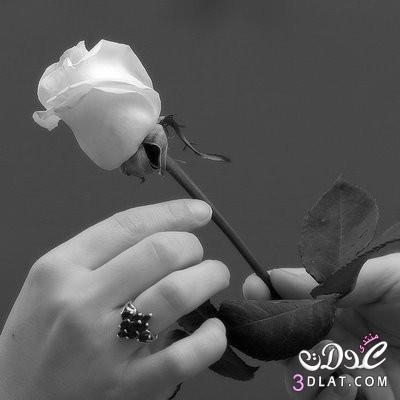صور رومانسية 2015 ,, أجمل الصور الرومانسية ,, صور حب ورومانسية