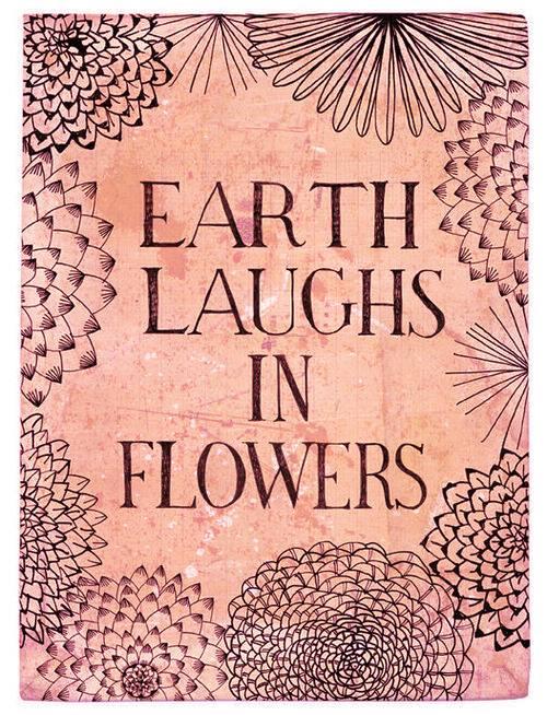 As flores são o sorriso da Terra