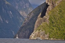 Milford Sounds, lindo!