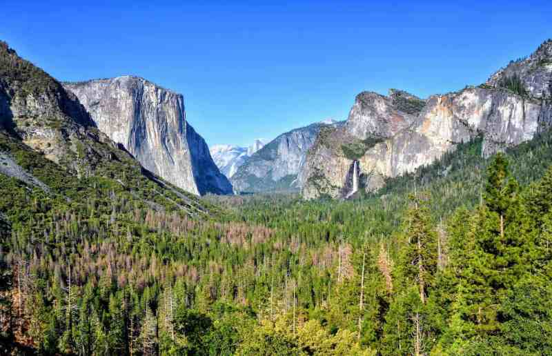 Where to Stay in Yosemite: 20 Amazing Lodges, Cabins and Campgrounds In or Near the Park