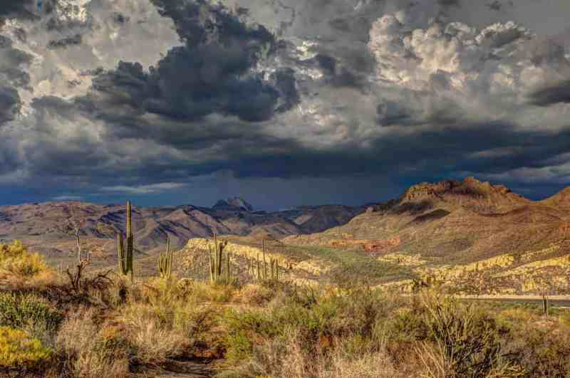 Saguaro National Park - one of the lesser known southwest national parks