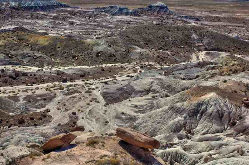 Petrified Forest National Park - a highlight of a southwest national parks trip