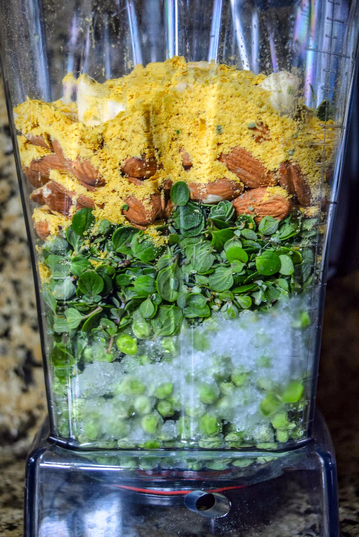 Ingredients for Vegan Marjoram Pea Pesto in Vitamix Blender from side, including homegrown freshly-picked destemmed marjoram herb, frozen peas, almonds, garlic cloves, salt, and nutritional yeast