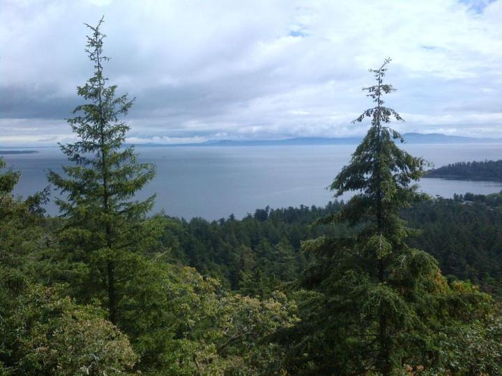 a view from Mount Douglas in Victoria, BC