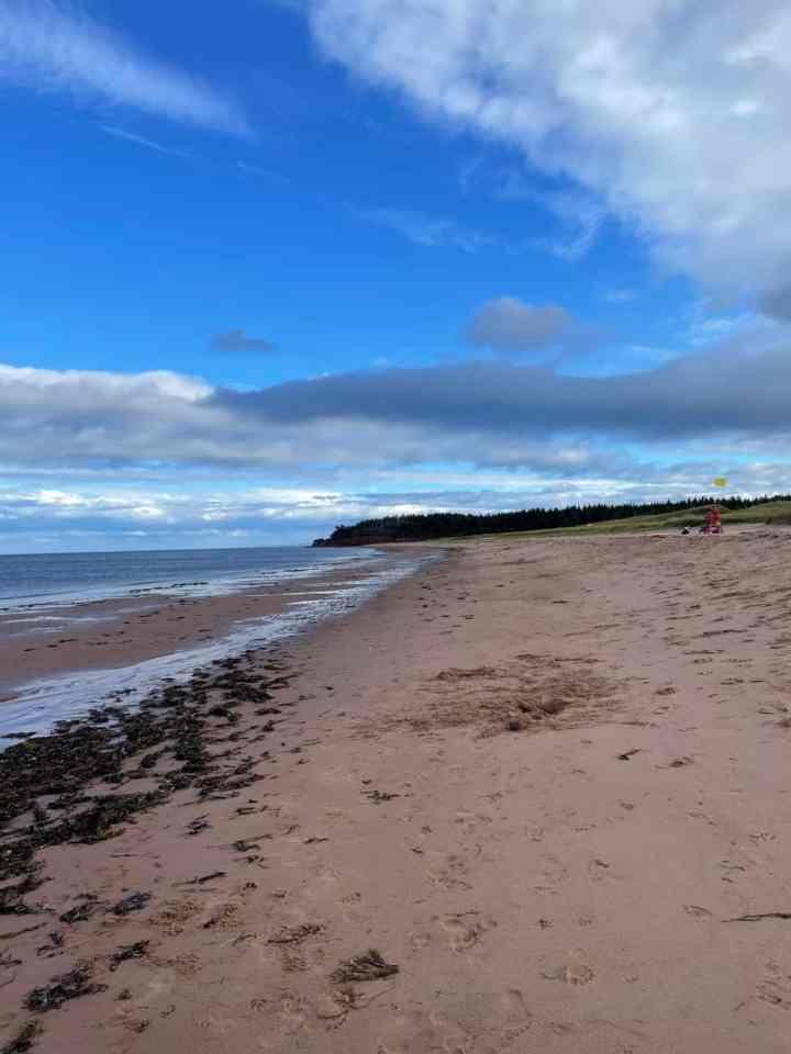 Panmure Island Provincial Park Beach