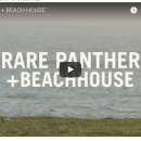 "Duckwrth - ""Rare Panther+Beachhouse"" Video"