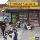 PineappleCiti - PineappleCiti [LP]