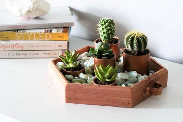 copper succulent planter diy project