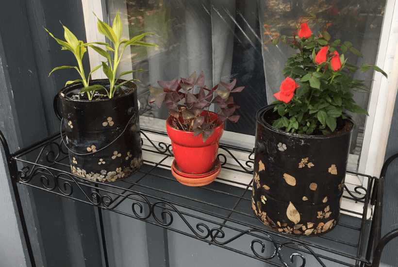 how to upcycle empty paint cans easy diy planter