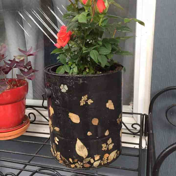 How to Upcycle Empty Paint Cans : DIY Planter