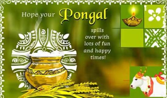 Happy Pongal Festival Images