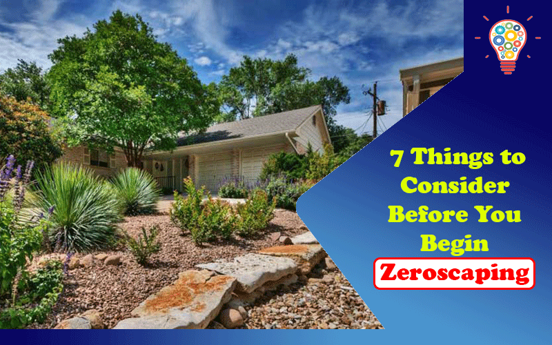 7 Things to Consider Before You Begin Zeroscaping