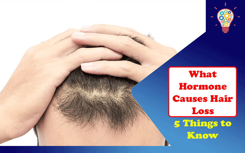 What Hormone Causes Hair Loss?