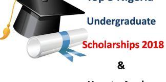 Undergraduate Scholarships 2018