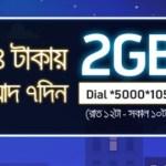 GP 2GB Night Pack 54Tk Offer