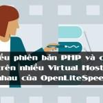 chay-nhieu-phien-ban-php-tren-openlitespeed