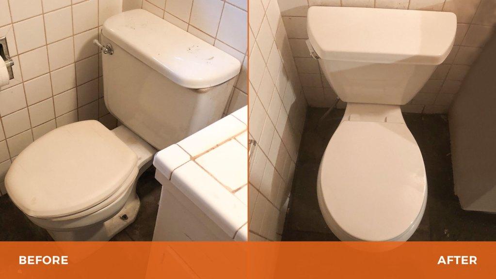 Toilet – Quinn