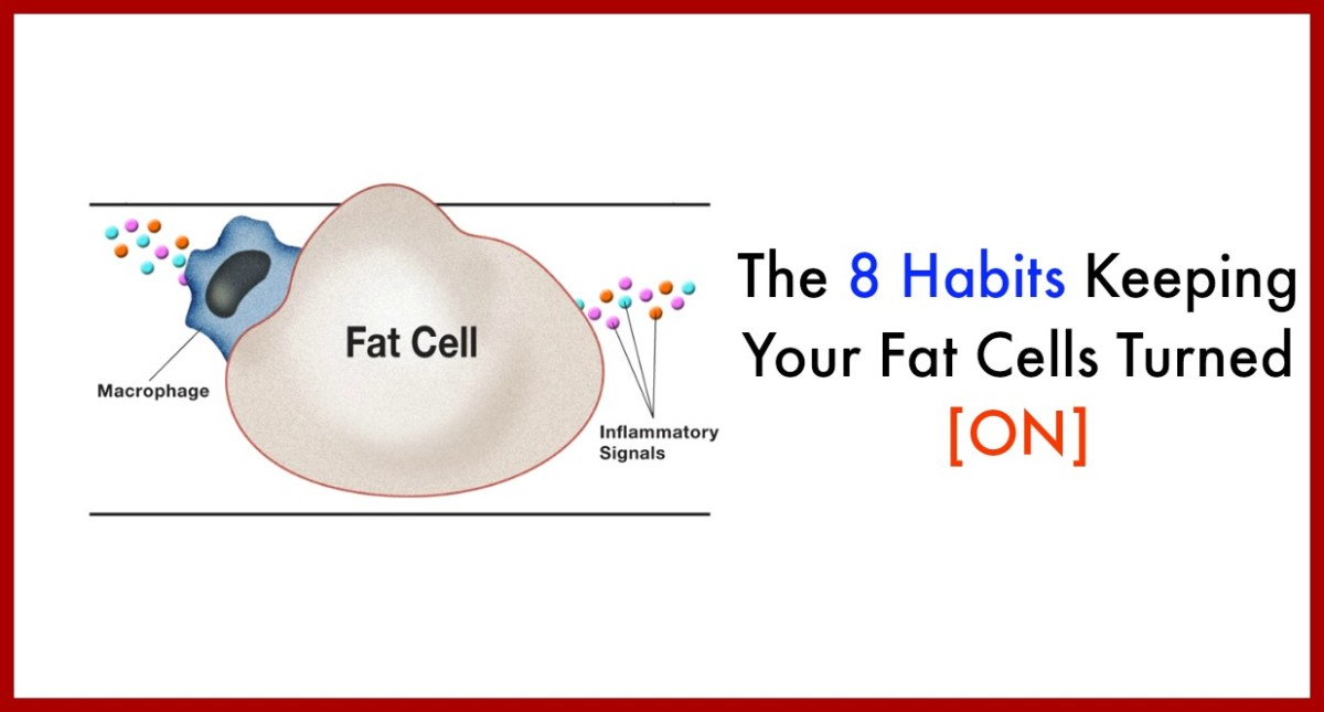 The 8 Habits Keeping Your Fat Cells Turned [ON] And How to Turn Them [OFF]