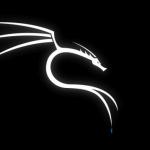 Kali Linux ISO Download 64-Bit & 32-Bit Installer (2020.4)