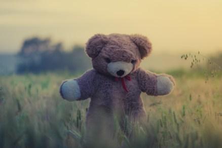 Teddy Waiting for a Hug.jpg