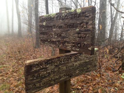 gregory bald trail signs