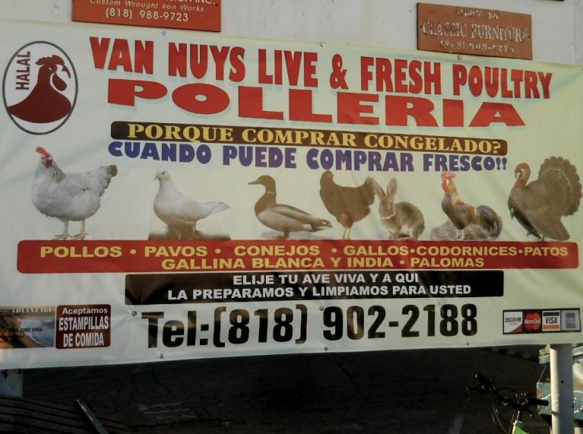 Birds, killed fresh on site. Rabbits, too.