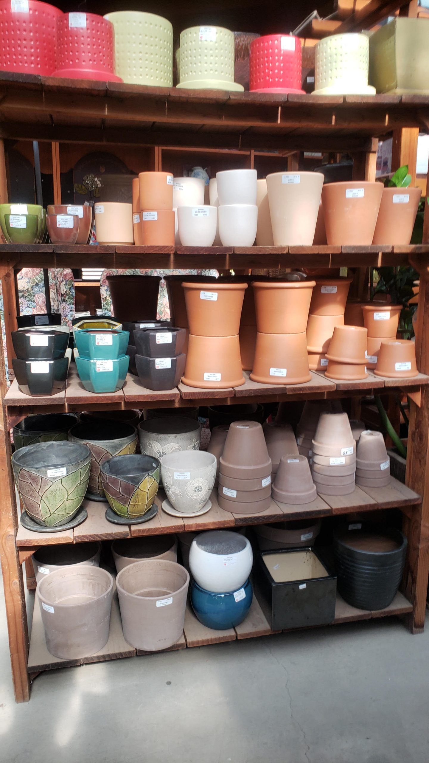 You are currently viewing CEMENT POT AND DECO POT