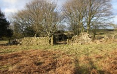 A ruinous shepherd's cottage near Eden House cairnfield