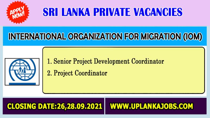 International organization for Migration (IOM) Vacancies 2021