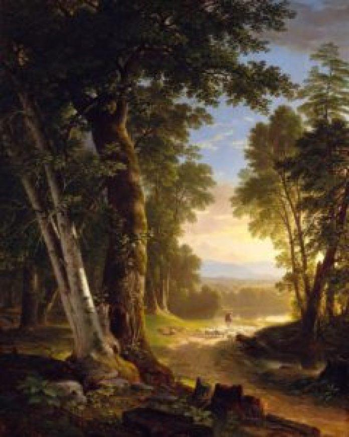 农村生活和家乡丹麦茂密森林的描绘(mcgawgraphics.com/pin)