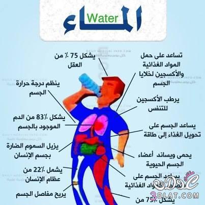 اهم الصائح لانقاص الوزن والتخلص من الدهون الضارة والماء