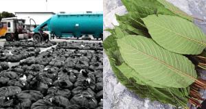 Polis temui daun ketum dalam lori tangki